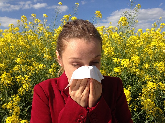 Auch bei Allergischen Reaktionen können Polyphenole helfen