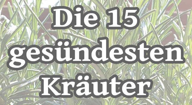 Die 15 gesündesten Kräuter