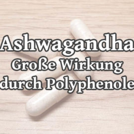 Ashwagandha – Große Wirkung durch Polyphenole