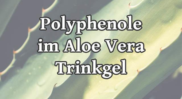 Polyphenole im Aloe Vera Trinkgel