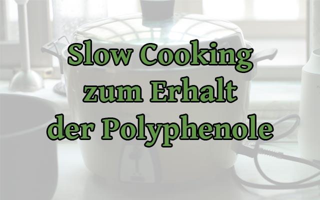 Slow Cooker Erhalt Polyphenole