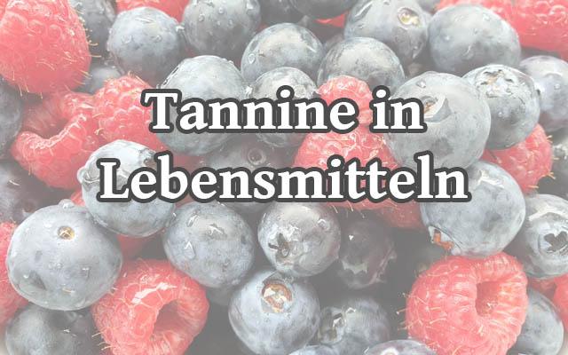 Tannine in Lebensmitteln