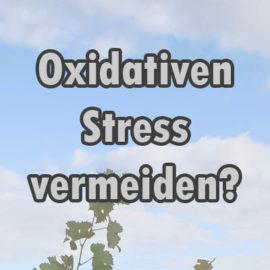 Oxidativer Stress vermeiden